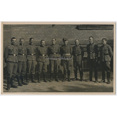 SS Officer and NCO's group portrait