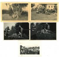 SA Photos - Pennant, portraits