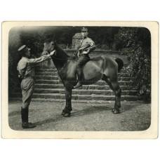 SA Member on horseback