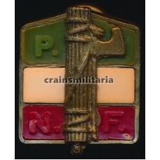 Italian fascist pin