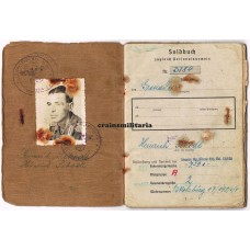 Soldbuch 254.ID Grenadier - WIA Silesia 1945
