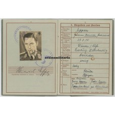 Knight's Cross Wehrpass Stuka pilot Henrich Eppen
