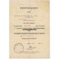 Uboot Verwundetenabzeichen document